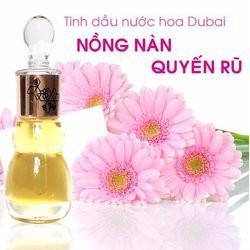 Tinh dầu nước hoa Dubai hoa cúc với thành phần 100% chiết suất từ hoa cúc